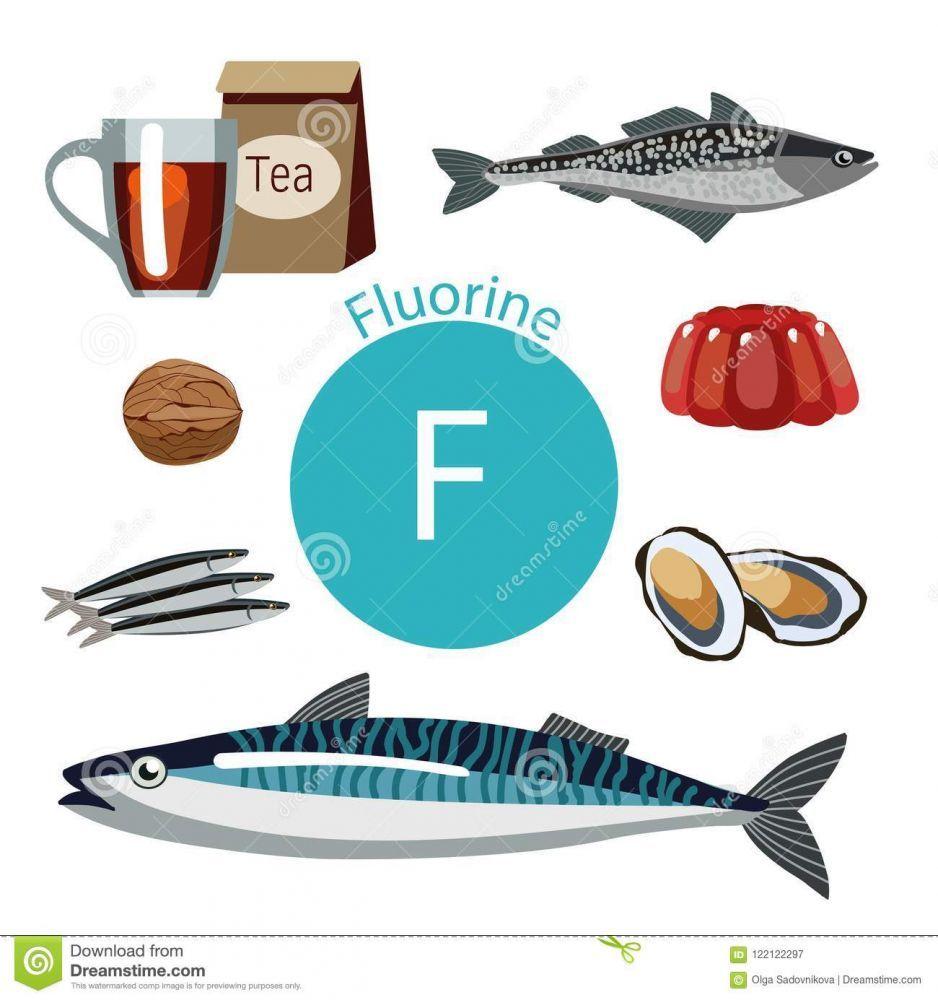 ricchi-dell-alimento-con-fluoro-un-insieme-degli-alimenti-organici-tenore-elevato-di-minerale-122122297